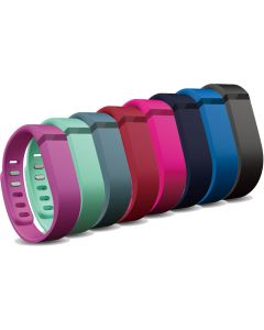 Fitbit Flex Replacement Band Large-main